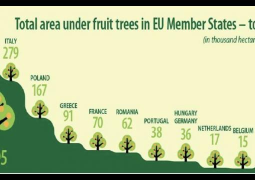 Árvores de fruto na Europa